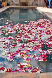 Cheap Backyard Reception Ideas 21 Pool Decor Ideas For Your Backyard Wedding Decoration Pool