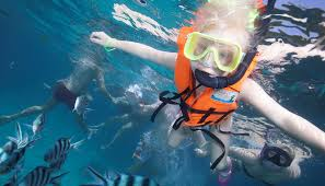 snorkeling images Island tours snorkeling coral dreams panama jpg