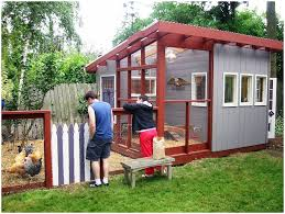 Backyard Plans Designs For Chic Of Chicken Coop Design  E Inside - Backyard plans designs