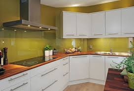 green kitchen cabinet ideas enchanting modern kitchen design ideas showcasing glossy lime