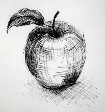 drawn rennaisance apple pencil and in color drawn rennaisance apple