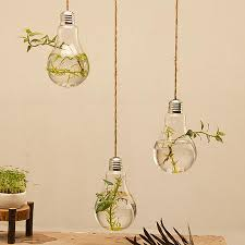 3pcs lot hanging glass light bulb planter vase air plant terrarium