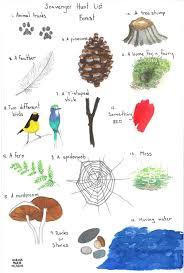 Backyard Scavenger Hunt Ideas Paper Bluejay A Forest Scavenger Hunt Downloadable Pdf