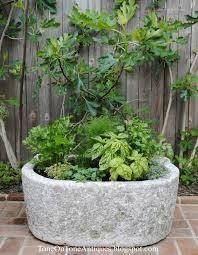 herbs planter tone on tone a trough herb planter