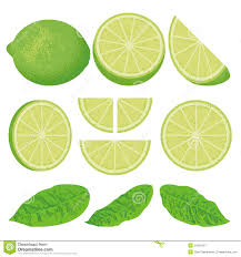 fresh lime with splash royalty free stock photo image 32216465