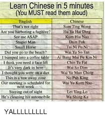 Sum Ting Wong Meme - learn chinese in 5 minutes you must read them aloud english that s