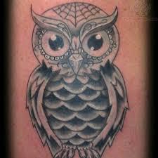 sugar owl elaxsir