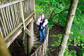 a treehouse adventure in wales mummy daddy me