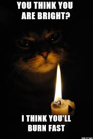 Be Prepared Meme - when you outsmart your cat be prepared for some revenge meme on
