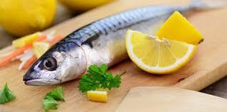 fischküche fisch glossar das 1mal1 in der fischküche gutekueche at