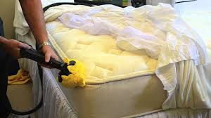 Killing Bed Bugs In Clothes How To Kill Bed Bugs On A Mattress Using Steam Youtube