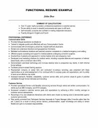 Resume Summary Examples Entry Level by Example Of Resume Profile Entry Level Resume Sample With Sample