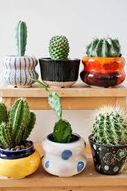 Cheap Small Flower Pots - best 20 flower pot centerpiece ideas on pinterest edible