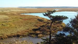 Nauset Marsh Cape Cod - cape cod escape travels with harvy