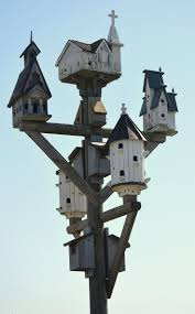 hummingbird house plans 25 unique purple martin house plans ideas on pinterest martin