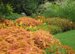 warm designing a flower garden layout annual flower bed designs