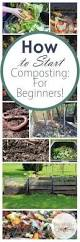 composting for beginners compost composting and starting a garden