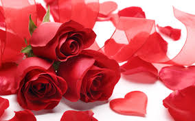 Valentine Flowers Love U0026 Valentine Hd Wallpapers 4 Hd Wallpapers