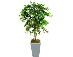 artificial trees artificial trees for indoor and outdoor use at evergreen direct