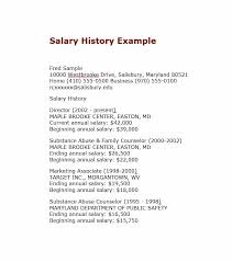 19 great salary history templates u0026 samples template lab