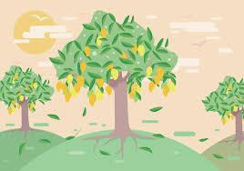 Mango Boom mango boom vector gratis vectorkunst en andere