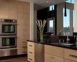horizontal grain kitchen cabinets modern kitchen design ideas