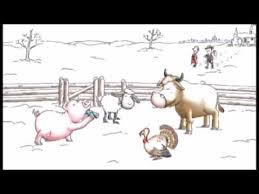 bull farmyard animals 2014