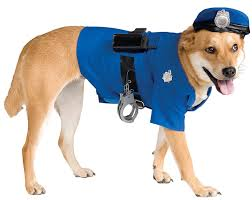 amazon com rubie u0027s police dog pet costume x large pet supplies