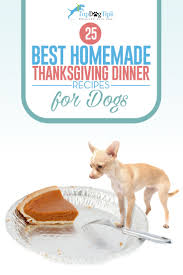 what is a thanksgiving dinner menu 25 best thanksgiving dinner recipes for dogs u2013 top dog tips