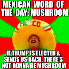 Spanish Word Of The Day Meme - mexican word of the day mushroom on memegen