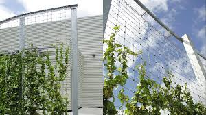 Stainless Steel Cable Trellis G6 3 Greenwall Jakob Systems