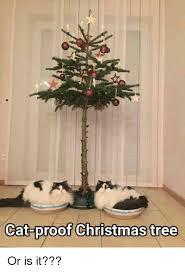 Christmas Tree Meme - 25 best memes about cat proof christmas tree cat proof