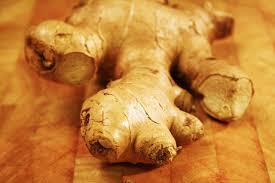 Is Ginger Root A Vegetable - watchfit ginger benefits for weight loss 7 unbelievable facts
