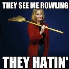 Harry Potter Funny Memes - they see me rowling harry potter meme