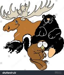moose black bear skunk beaver cartoon stock vector 98800151
