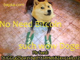 Dogecoin Meme - with its own cryptocurrency doge has officially conquered 2013
