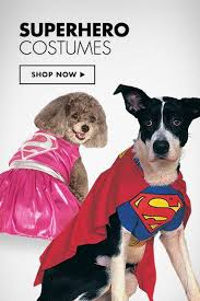 Halloween Costumes Small Dogs Superhero Dog Costumes Crafts Diy Costumes Diy