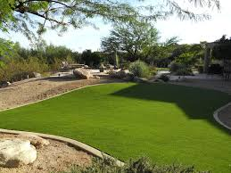 charming decoration backyard turf terrific artificial grass cost
