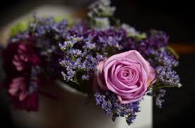 free photo rose pink floral arrangement free image on pixabay