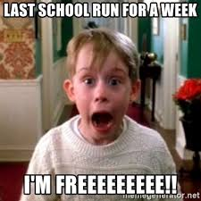 last school run for a week i m freeeeeeeee home alone meme