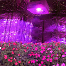 Cheap Grow Light Kits Online Get Cheap Grow Light Reflector Aliexpress Com Alibaba Group