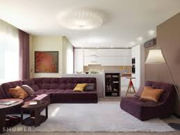 Maroon Sofa Living Room Living Room Exquisite Earth Tones Living Room Design And