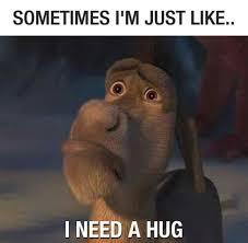 donkey meme movies stuff pinterest donkey meme and memes