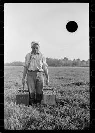 depression era some great depression photos were punched full of holes