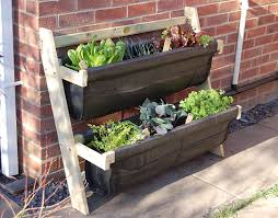 Garden Allotment Ideas Allotment Community Garden Ideas 12 Terrific Garden Allotment
