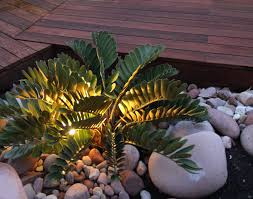 Florida Landscape Ideas by Cardboard Cycad In Riverstone Pebbles Landscape Design