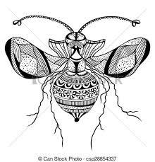 kasten ältest wanzen auf haus stockfoto bild kasten geflügeltes insekt clip vektor und illustration 19 326