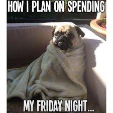 Its Friday Memes 18 - when you cancel plans to stay in with your dog