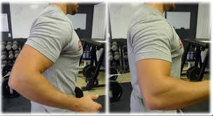 Posterior Shoulder Pain Bench Press Anterior Humeral Glide Preventing It To Keep You In The Game