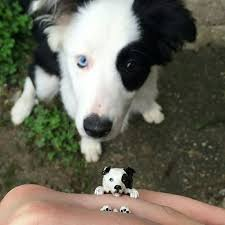 shabby chic dog ring holder images 26 best dog fever jewelry jewelry studio images jpg
